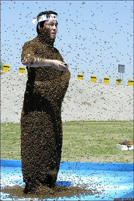 bees 050206.jpg
